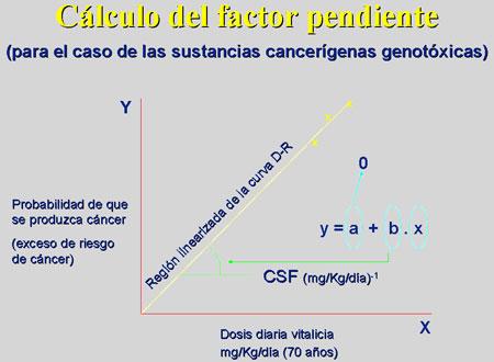 Tema 1 Concepto Historia Y Alcance De La Toxicolog A