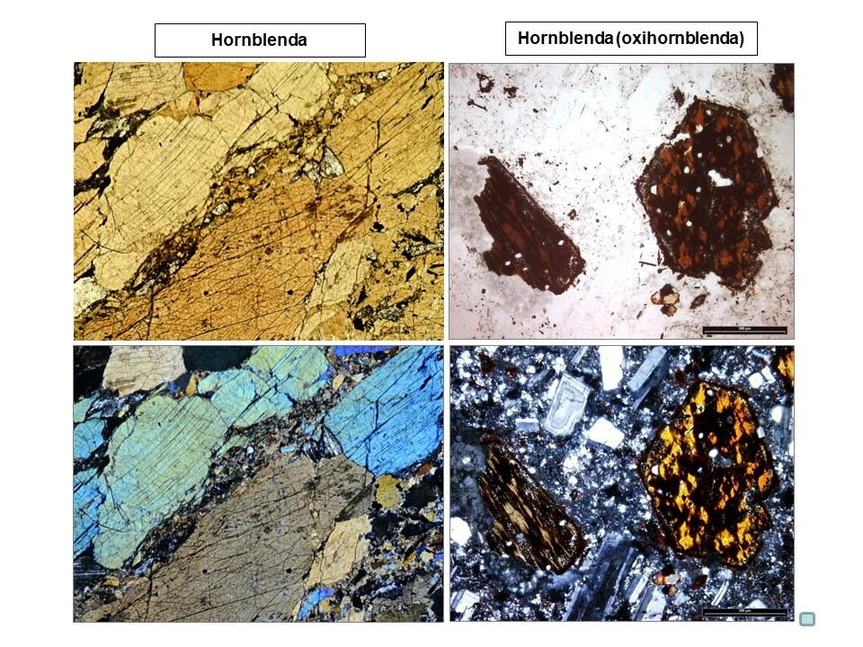 Atlas Minerales Micros...