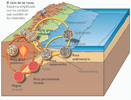 Rocas sedimentarias for Formacion de la roca